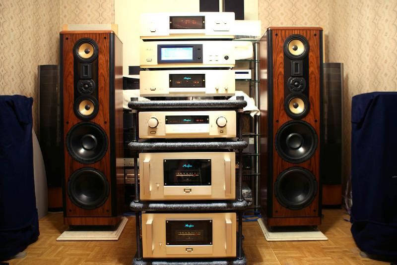 McIntosh Plinius Mark Levinson Accuphase Threshold Spectral Bryston LAMM Gryphon CHORD Manley CARY McCormack Air Tight Jadis BAT Classe Blue Note PASS LABS Unison Spectral и др