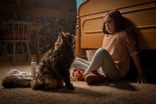 «Кладбище домашних животных» / Pet Sematary (2019)