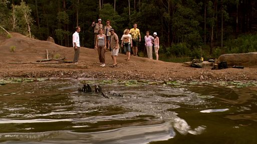 Крокодил / Rogue (2007)