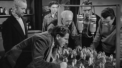 «Нечто» / The Thing from Another World (1951)