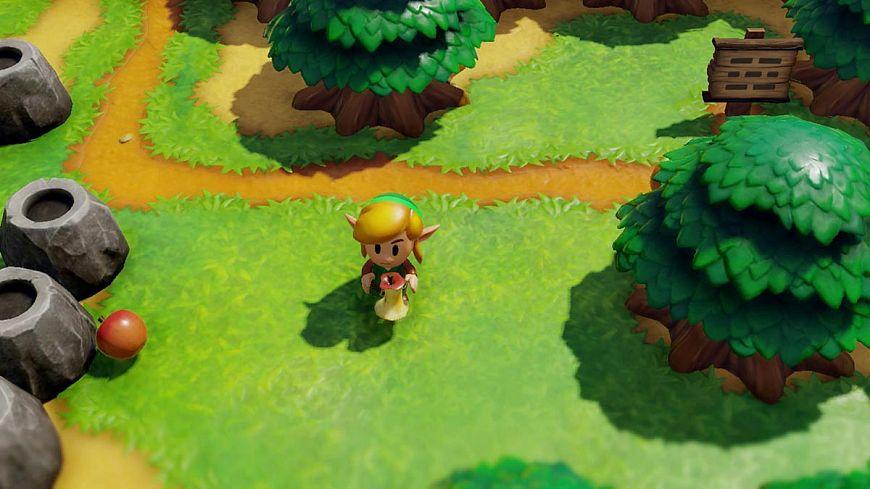 10. The Legend of Zelda: Link