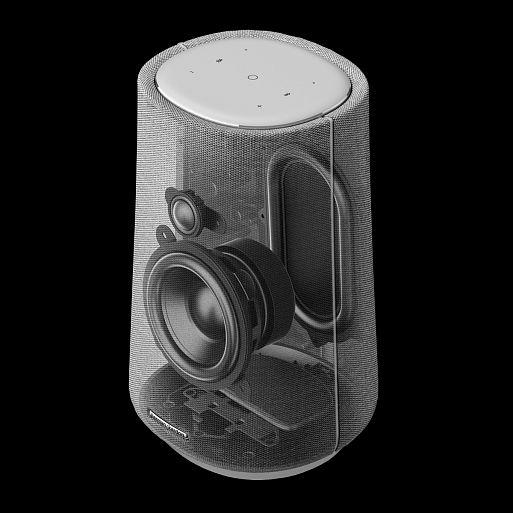 Беспроводные аудиосистемы Harman Kardon Citation 100