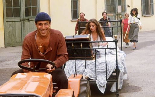 11. «Укрощение строптивого» / Il bisbetico domato (1980) – 56 миллионов зрителей