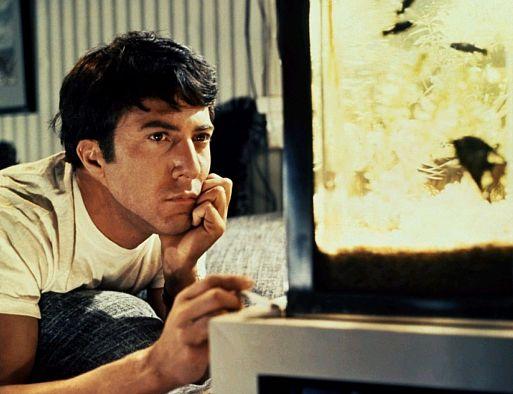 «Выпускник» / The Graduate (1967)