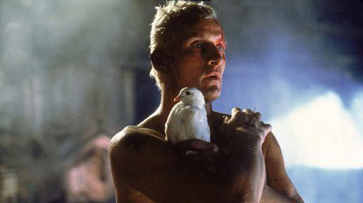 «Бегущий по лезвию» / Blade Runner (1981)