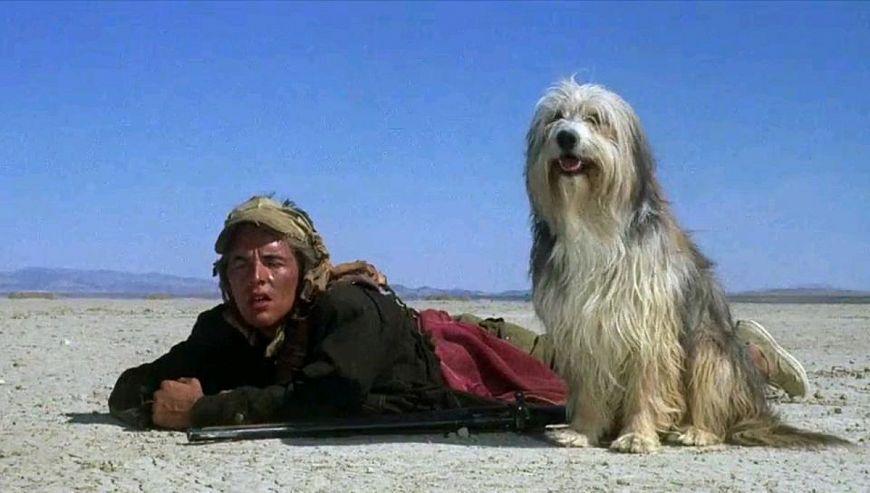 Парень и его пес / A Boy and His Dog (1974)