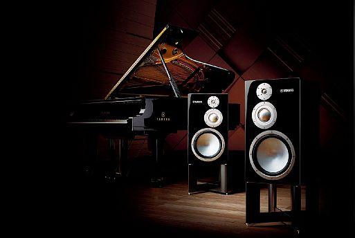 Трёхполосные акустические системы NS-5000