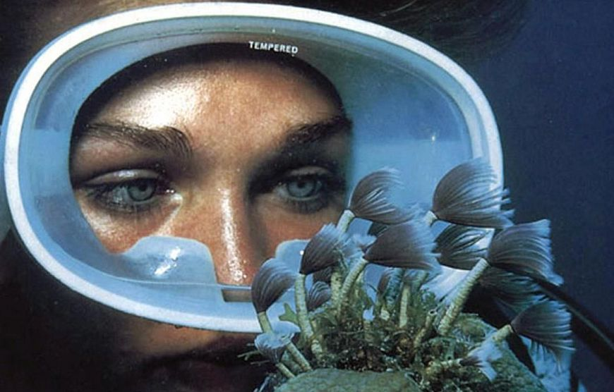 6. Бездна / The Deep (1977)